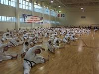 http://www.olympik.ru/images/pict0026.jpg